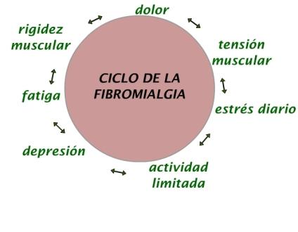 ciclo de la fibromialgia