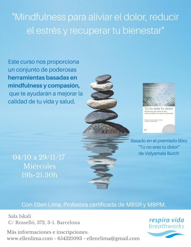 curso mindfulness 8 semanas resumido